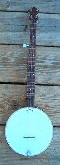 Michael Fox 5-string Banjo SB108038