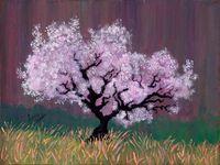 #14 Spring Pink 2