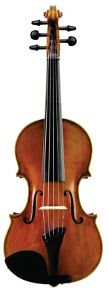 Fat Strad 5-string front cropped