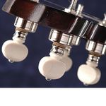 Waverly_Banjo_Tuning_Pegs (3)