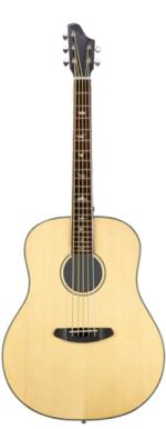 Baritone Melodic Guitar by D. Rickert