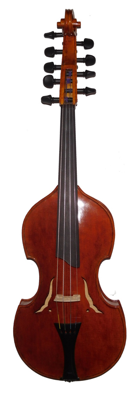 Violin d'Amore 14 inch 4x5 front rotated