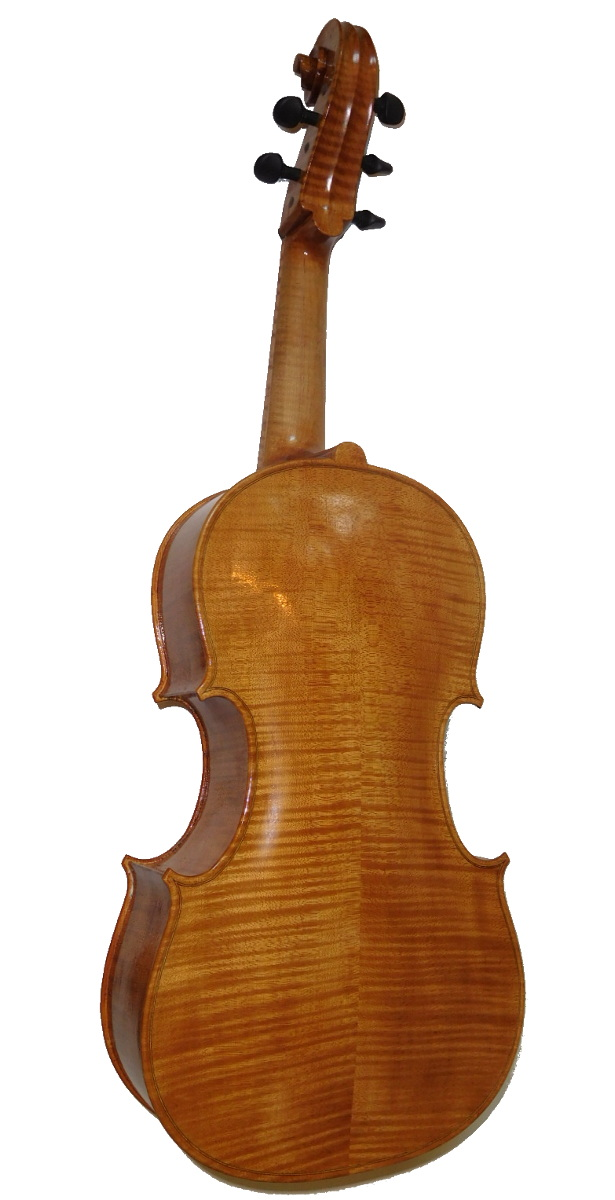 Rickert Violoncello da Spalla back full 1