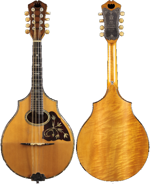 Vega mandolin scaled