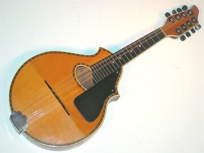 Stromberg-Voisinet mandolin scaled