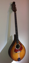 Lunny bouzouki by Abnett scaled